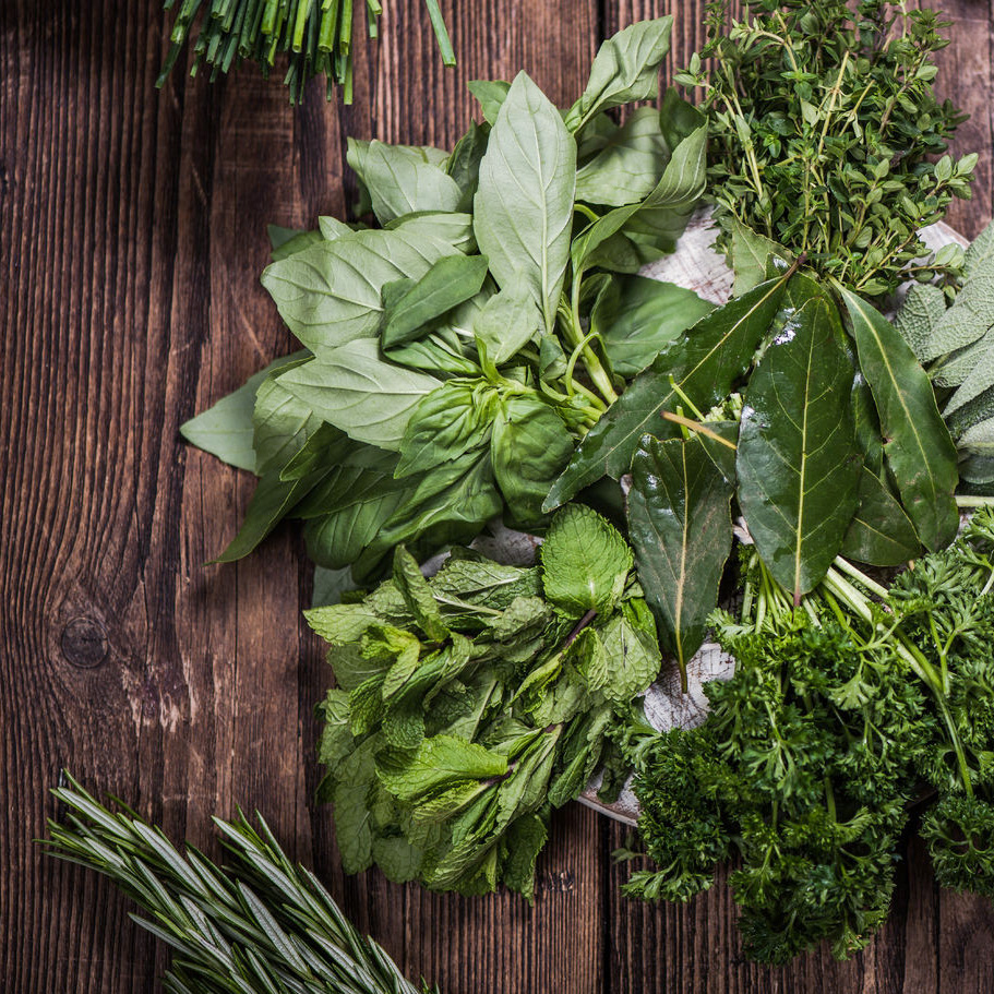Five Ways To Store Fresh Basil And Other Green Things - Holistic Squid